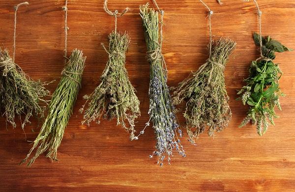 Травы от тараканов